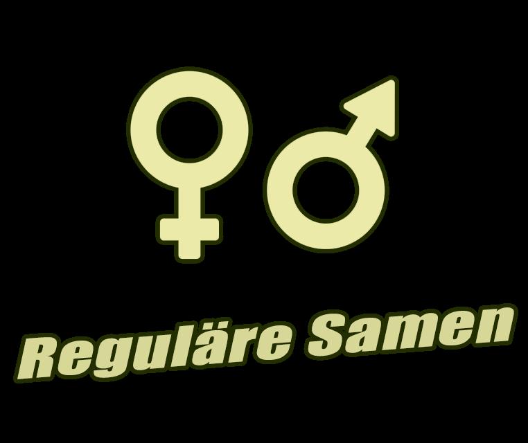 Reguläre Samen