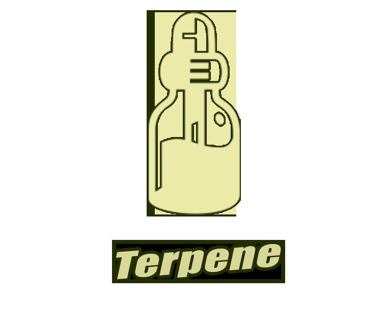 Terpene