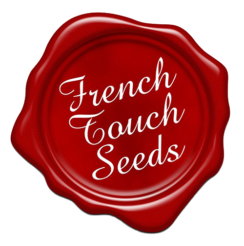 French Touch Seeds