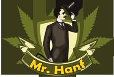 Mr. Hanf Samen