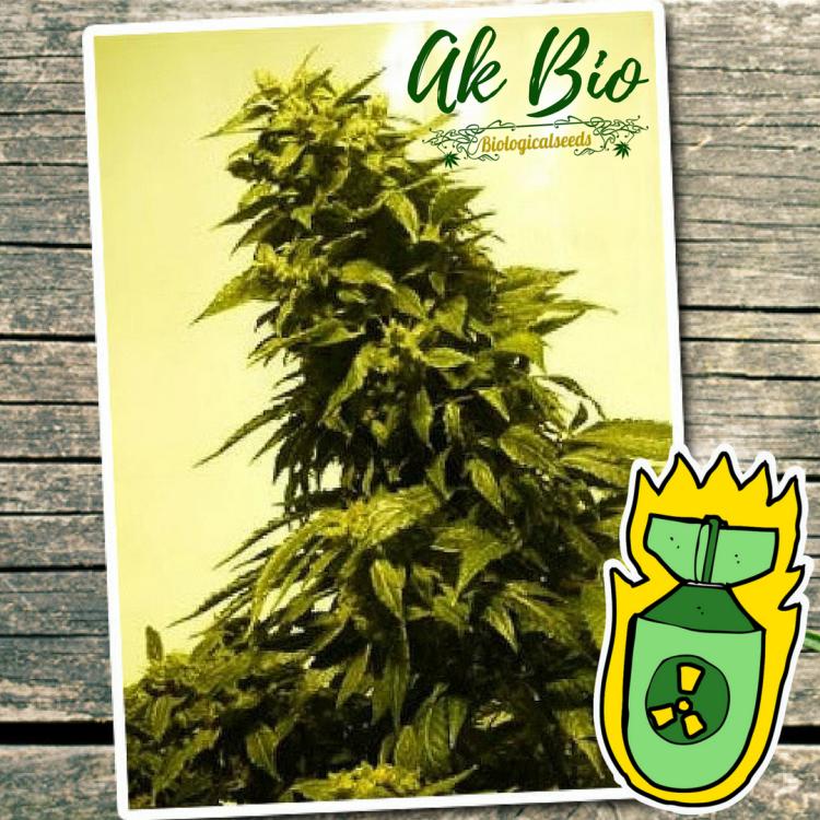 AK Bio