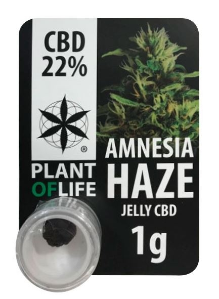 Amnesia Haze 22% CBD Jelly