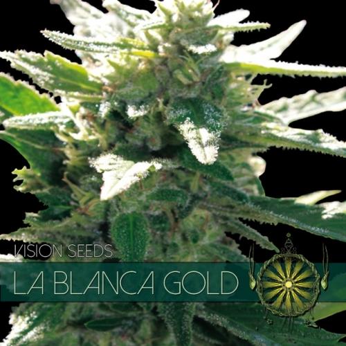 La Blanca Gold