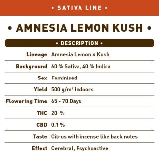 Amnesia Lemon Kush