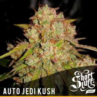 Auto Jedi Kush