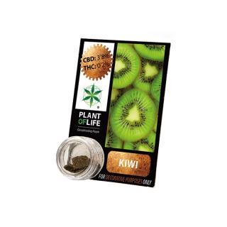 CBD Pollinat Kiwi