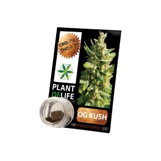 CBD Pollinat OG Kush