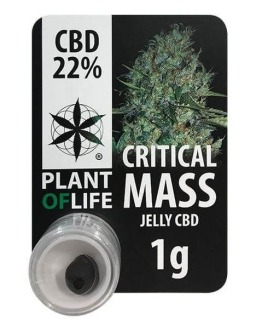 Critical Mass 22% CBD Jelly