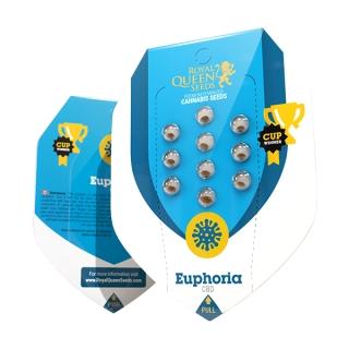 Euphoria CBD