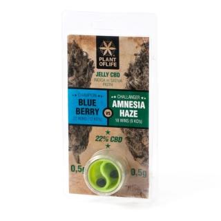 Jelly CBD 22% - Blueberry VS Amnesia Haze 1 g