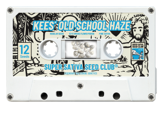 Kees Old School Haze reg.