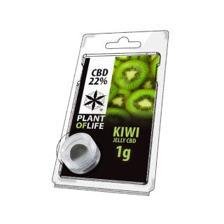 Kiwi 22% CBD Jelly 1 g