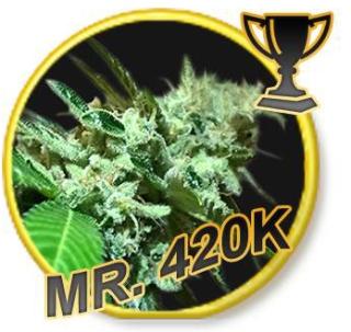 Mr. 420K