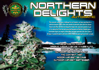 Northern Delights Auto