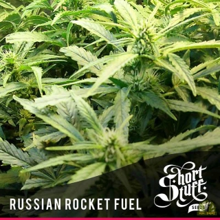 Russian Rocket Fuel reg.