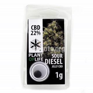 Sour Diesel 22% CBD Jelly