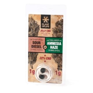Jelly CBD 22% - Sour Diesel vs Amnesia Haze 2 g
