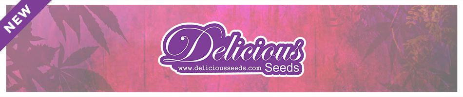 New strains by Delicious Seeds